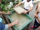 竹紙の製法④